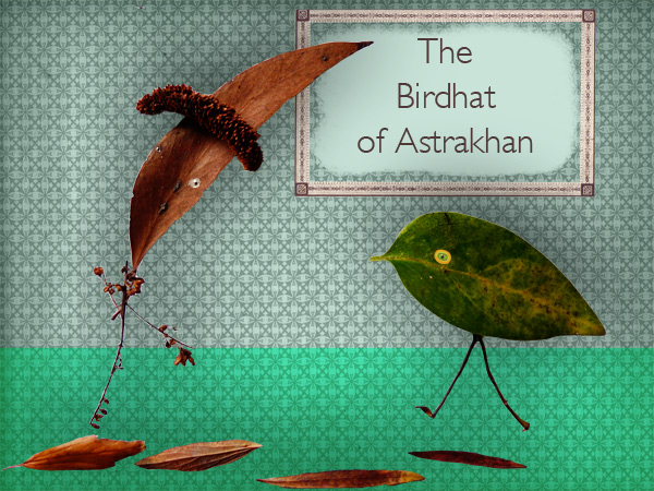 The Birdhat of Astrakhan