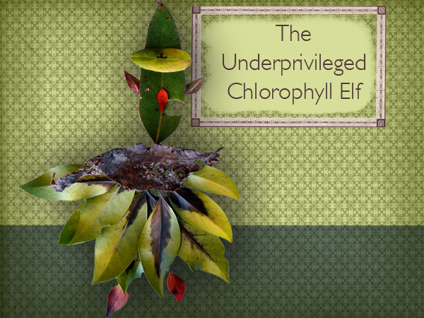The Underprivileged Chlorophyll Elf
