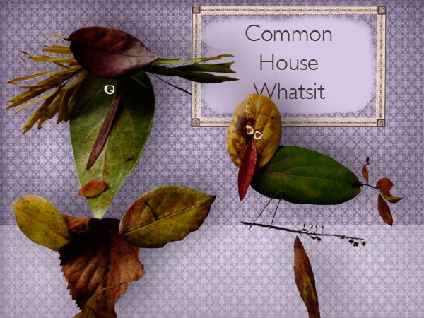 Common House Whatsit